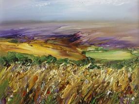 spring-fields
